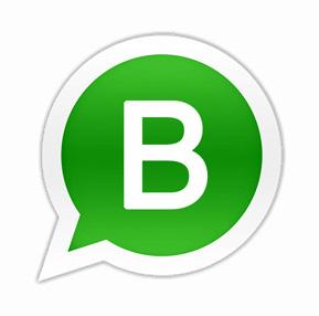 gecco Bühl bietet Livestream Beratung mit WhatsApp Business